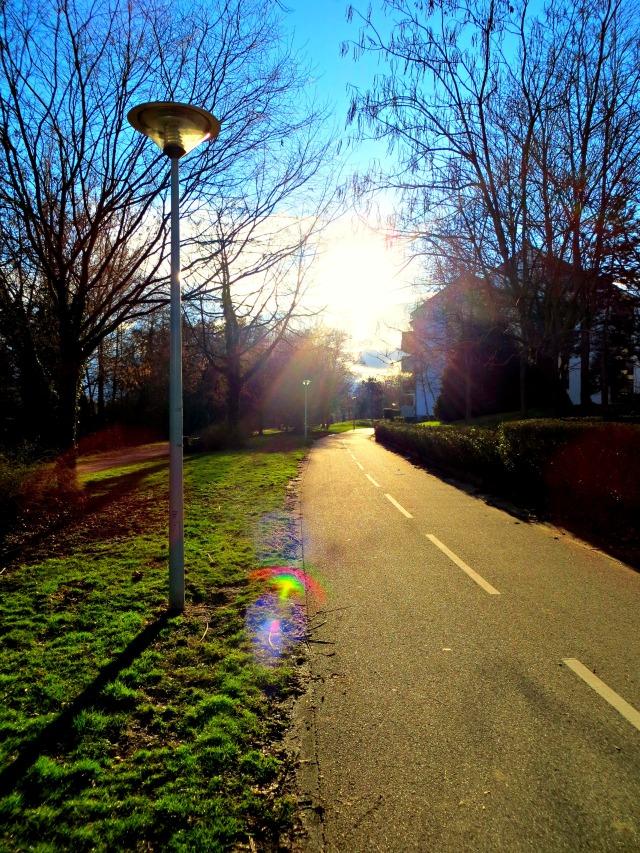 Strasbourg Bike Path